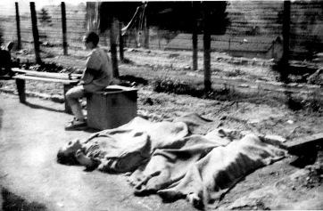 mauthausen edit 3
