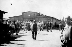 mauthausen edit 4