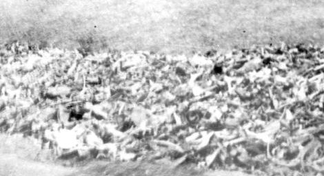 mauthausen edit 7