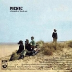 18 Various Picnic