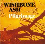 30 Wishbone Ash Pilgrimage