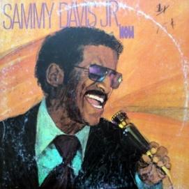 sammy-now-1