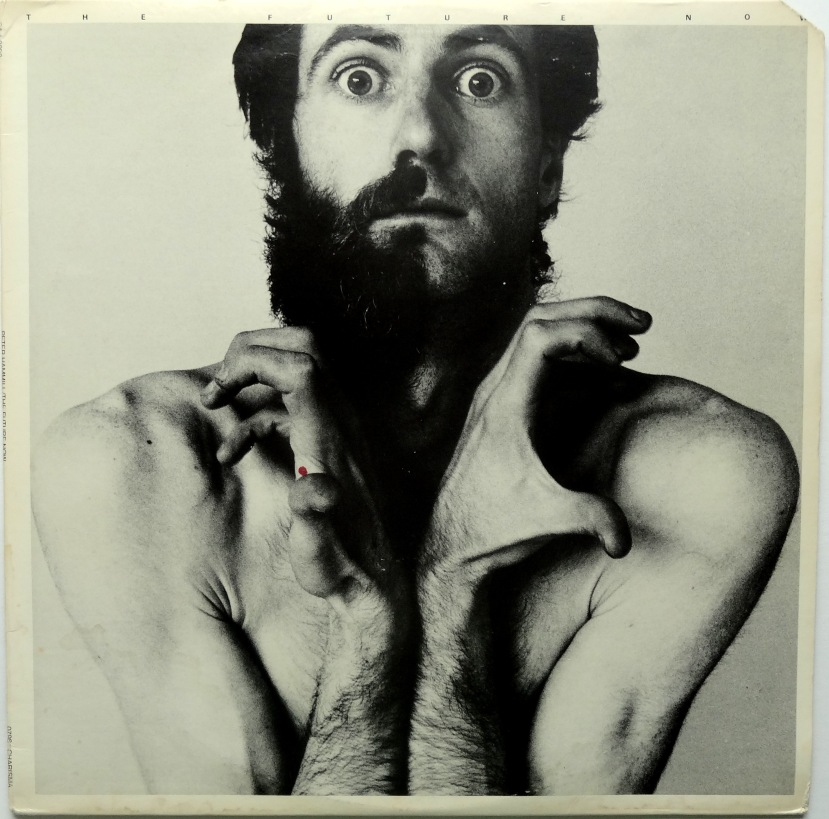 peter hammill the future now