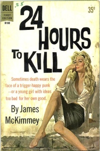 24-hours-to-kill