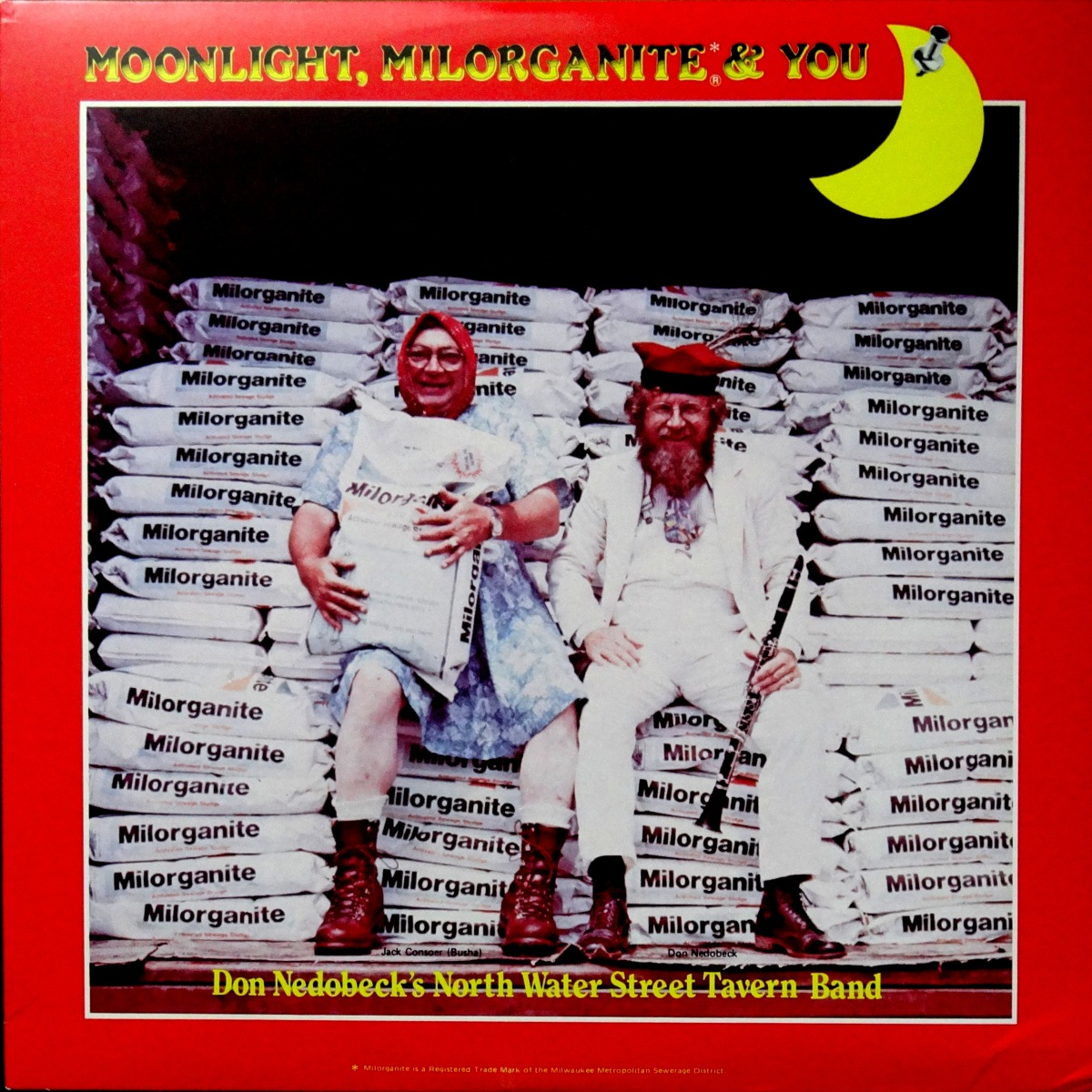From The Stacks: Don Nedobeck's Northwater Street Tavern Band-Moonlight, Milorganite, and You
