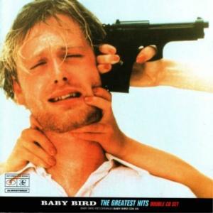 babybird greatest hits