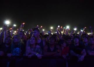 crowd22