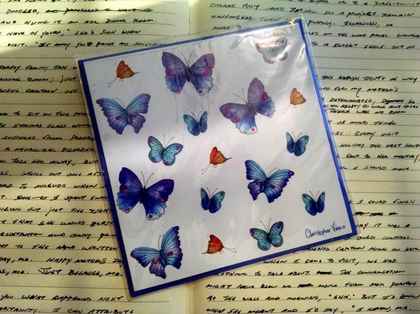 17 Butterflies