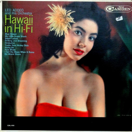 Leo Addeo Hawaii Hi Fi
