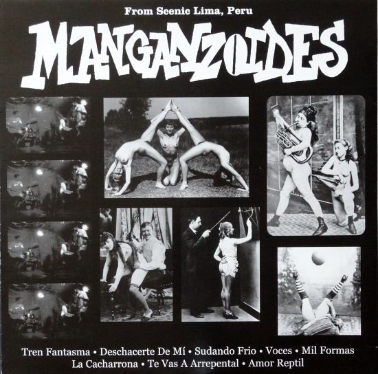 Manganzoides front