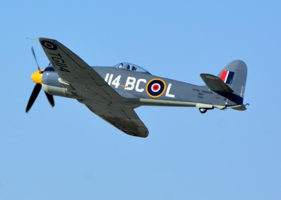 Sea Fury 114
