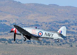 Sea Fury 71