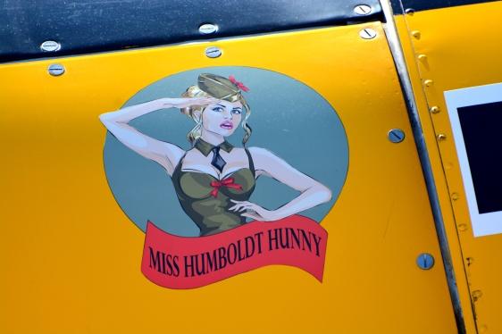 T6 Humboldt Hunny