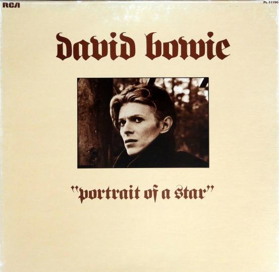David Bowie Portrait e