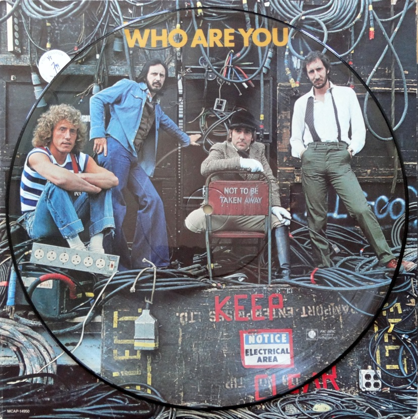 From The Stacks The Who Who Are You Picture Disc Why It Matters