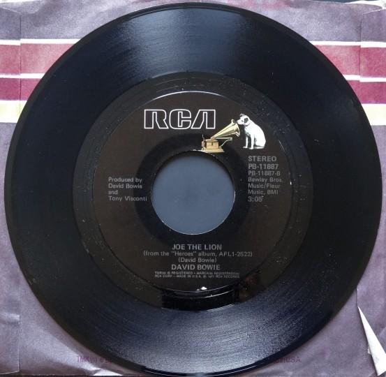 Bowie Joe the Lion 1